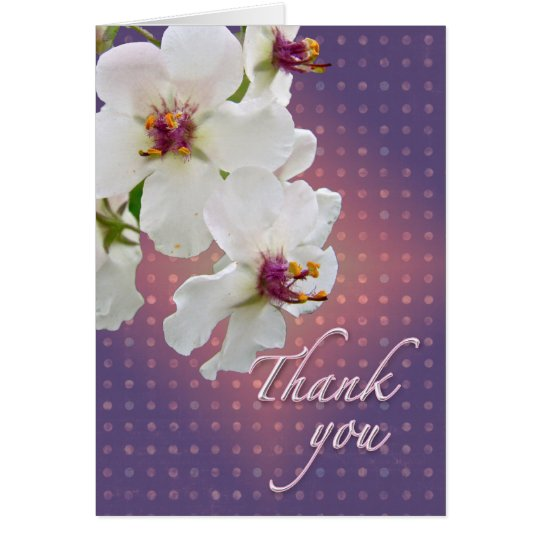 Thank You Moth Mullein Wildflower Card