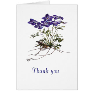 thank you for your sympathy note cards
