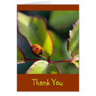 Thank You Notecard with Ladybug Design