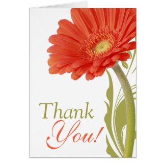 Thank You | Orange Gerbera Daisy Card