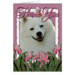 Thank You - Pink Tulips - American Eskimo