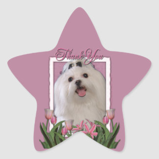 Thank You - Pink Tulips - Maltese Star Sticker