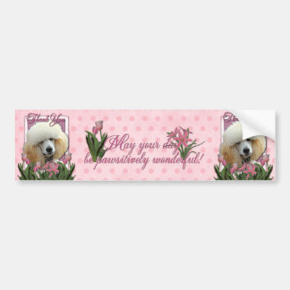Thank You - Pink Tulips - Poodle - Apricot Bumper Sticker