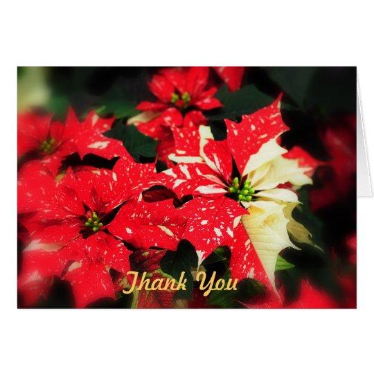 Thank You Poinsettas Card