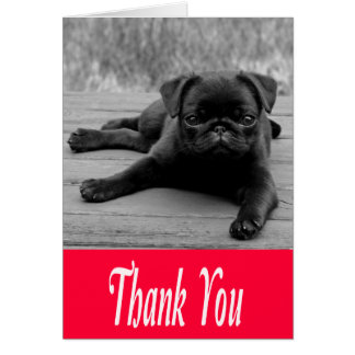Thank You Pug Puppy Pink, Black & White Note Card