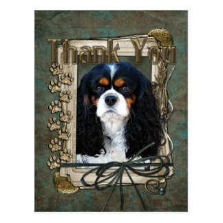 Thank You - Stone Paws - Cavalier Postcard