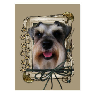 Thank you - Stone Paws - Schnauzer Postcard