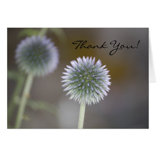 THANK YOU Thistle Card