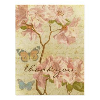 Thank You Vintage Pink Rhododendron Elegant Floral Postcard