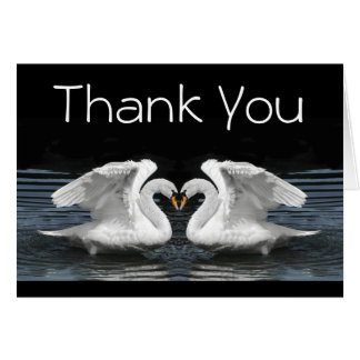 Thank You --  White Mute Swans Card