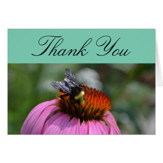 Thank You With Echinacea Card