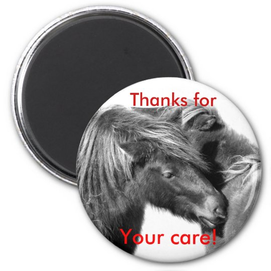 Thanks for Your care! Ponies scratching magnets