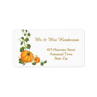 Thanksgiving, autumn harvest, two pumpkins Label Address Label