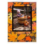 thanksgiving card photo greeting card
