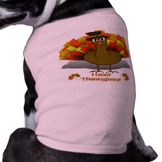 Thanksgiving Cartoon Turkey Pilgrim Shirt