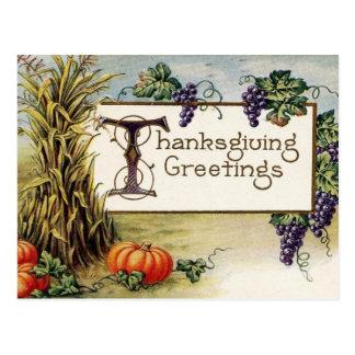 Thanksgiving Greetings 2 Postcard