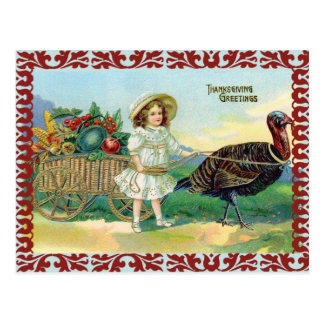 Thanksgiving Greetings Greeting Post Cards