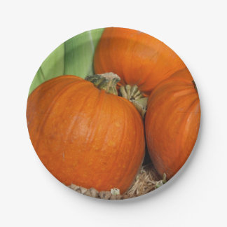 Thanksgiving/Halloween Pumpkin Paper plate