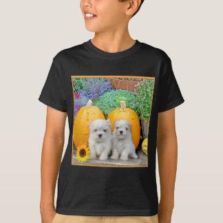 Thanksgiving Maltese puppies Shirt