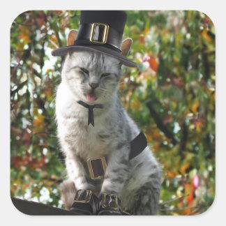 Thanksgiving Pilgrim Cat Square Sticker