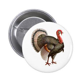 THANKSGIVING TURKEY 6 CM ROUND BADGE