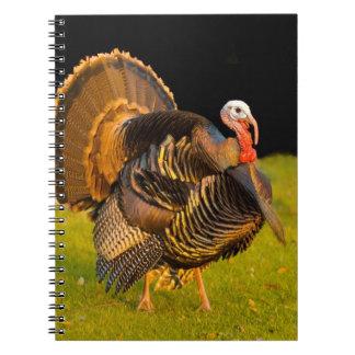 Thanksgiving turkey notebook