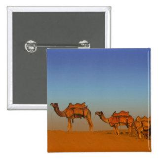 Thar desert, Rajasthan India. Camels along the 15 Cm Square Badge