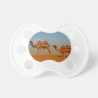 Thar desert, Rajasthan India. Camels along the Baby Pacifiers