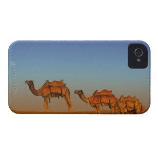 Thar desert, Rajasthan India. Camels along the iPhone 4 Case-Mate Cases