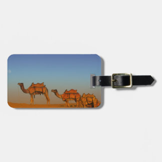 Thar desert, Rajasthan India. Camels along the Luggage Tag