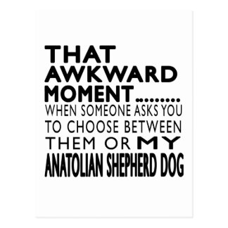 That Awkward Moment Anatolian Shepherd dog Postcard