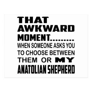 That awkward moment Anatolian Shepherd. Postcard