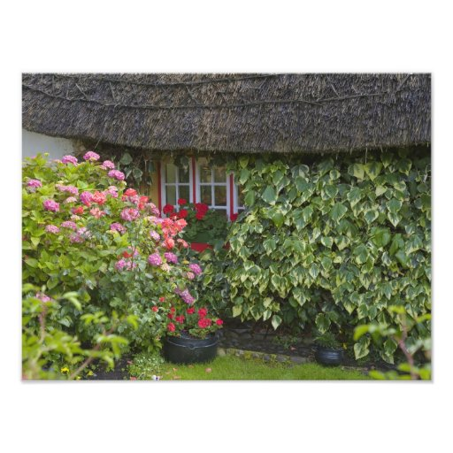 Thatched cottage, Adare, County Limerick, Photographic Print