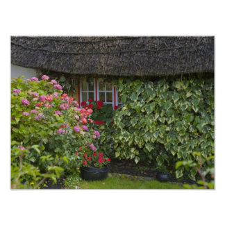 Thatched cottage Adare County Limerick Print