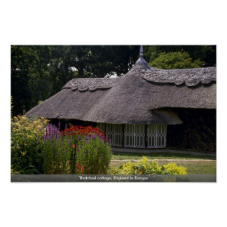 Thatched cottage England in Europe Poster
