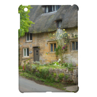Thatched Roof home Case For The iPad Mini