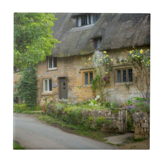 Thatched Roof home Tile