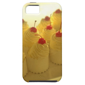 THB0011517 iPhone 5 CASES