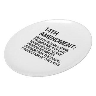 THE 14TH AMENDMENT PLATE