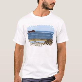 The 260 foot (80-metre) long wreck of the MV T-Shirt