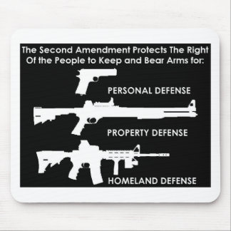 The 2nd Amendment Protects... Mouse Pad