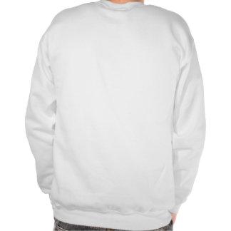 The 47% pull over sweatshirt
