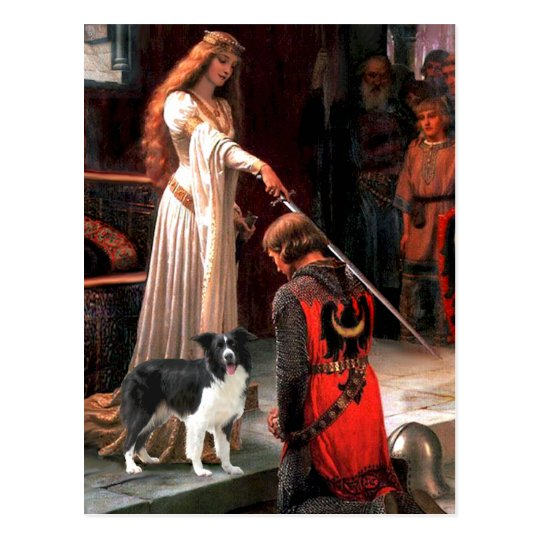 The Accolade - Border Collie (Z) Postcard