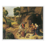 The Adoration of the Shepherds, 1505-10 Print