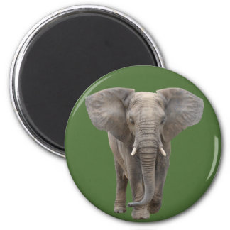 The African elephant 6 Cm Round Magnet