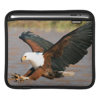The African Fish Eagle (Haliaeetus Vocifer) iPad Sleeve