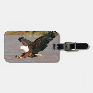 The African Fish Eagle (Haliaeetus Vocifer) Luggage Tag