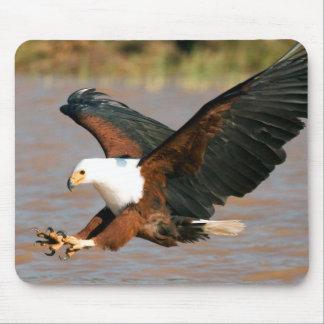 The African Fish Eagle (Haliaeetus Vocifer) Mouse Mat