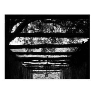The Alamo Corridor Postcard