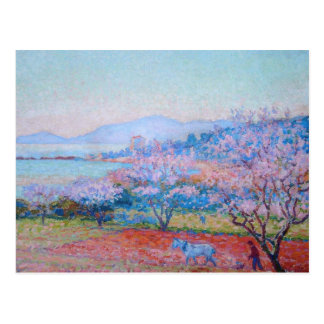 The Almond Flowers by Theo van Rysselberghe Postcard